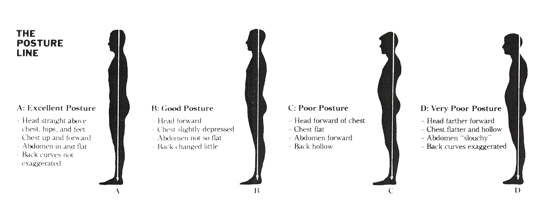 Picture showing the difference between excellent, good, poor and very poor postures of the upper body